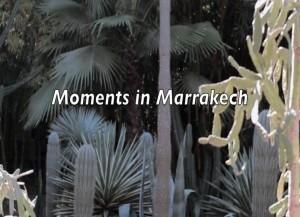 Moments in Marrakech by Phoenix James