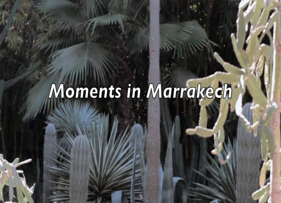 Moments in Marrakech by Phoenix James